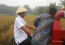 Menuju Rohil Mandiri di Bidang Swasembada Pertanian