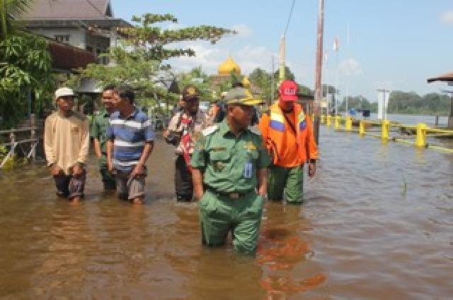 Bupati Pelalawan HM Harris meninjau banjir di Langgam